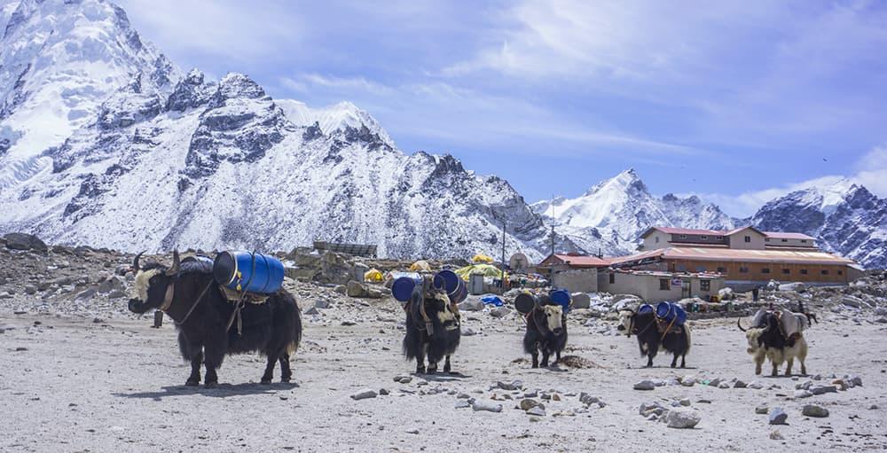 Transporte-en-Nepal
