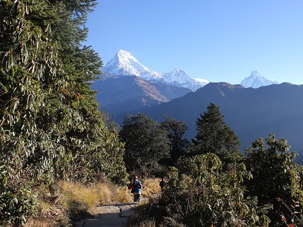 Vistas desde el bello trekking de Ghorepani Poon Hill