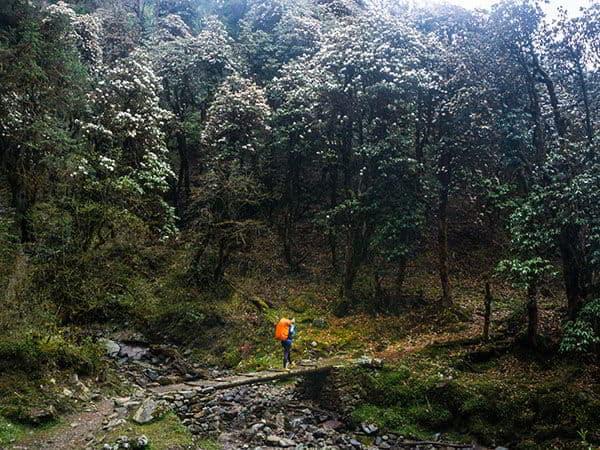 excursionista en trekking gosaikunda langtang helambu